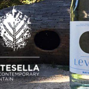 Acqua Levico è l'acqua ufficiale di Arte Sella, the contemporay mountain